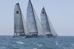 Yachts Compete In Team Sailing Event Royalty Free Stock Photography