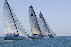 Yachts Compete In Team Sailing Event Royalty Free Stock Image