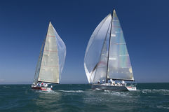 Yachts Compete In Team Sailing Event Stock Image