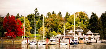 Yachts in docked in the Boatyard Marina at Stanley Park. Royalty Free Stock Photos