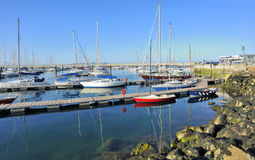 Yachts docked at Howth harbor Royalty Free Stock Photos