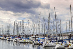 Yachts docked in marina bay Royalty Free Stock Images