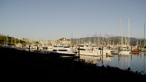 Yachts that are docked. A scenic shot of a pier. A lot of white yacht are docked stock video