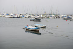 Yachts and fishing boats Royalty Free Stock Photo
