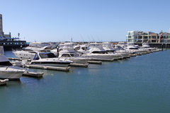 Yachts at Glenelg Marina Pier Royalty Free Stock Photography