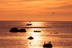 Yachts on the golden sunrise over the sea Royalty Free Stock Images