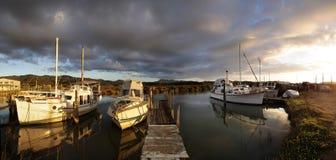Yachts in the harbor of Coromandel. North Island, New Zealand Stock Photography