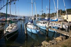 Yachts in Harbor, Kettering Stock Photo