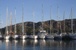 Yachts in a harbor Stock Images