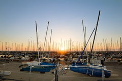 Yachts in the harbor of Tel Aviv Royalty Free Stock Photography