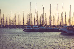 Yachts in harbour Stock Images