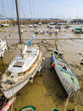 Yachts in a harbour during outflow Stock Images