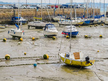Yachts in a harbour during outflow Royalty Free Stock Photos