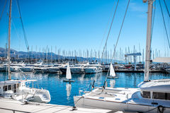Yachts in the harbour Royalty Free Stock Photography
