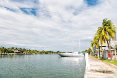 Yachts and luxury sail boats parked at blue sea dock. Miami beach or south beach. yachts and luxury sail boats parked at blue sea dock or bay pier green palm Stock Image