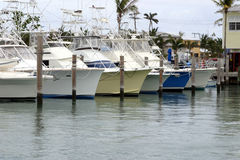 Yachts in the marina. A set of fishing speedboat yachts tied up in a tropical marina Stock Images