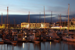 Yachts in the marina of Lagos Stock Image