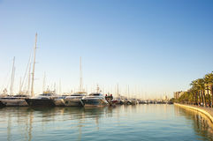 Yachts at Marina Royalty Free Stock Image