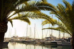 Yachts at Marina Stock Image