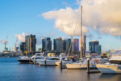 Yachts in marina and modern residential buildings in Melbourne at sunset Royalty Free Stock Image