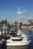 Yachts in a marina, Portland Oregon. Moored yachts in a marina Portland Oregon Royalty Free Stock Photography