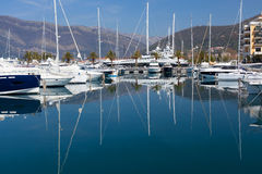 Yachts in the marina Porto Montenegro Royalty Free Stock Image