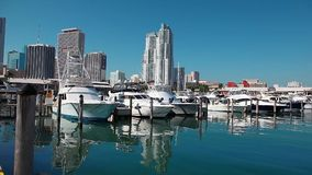 Yachts in Miami Downtown, Florida Royalty Free Stock Images