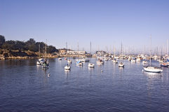 Yachts on Monterey Bay Royalty Free Stock Photo