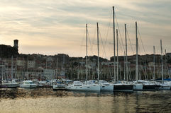 Yachts moored in Cannes Stock Image