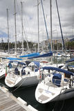 Yachts moored in Funchal seaport, Madeira island Stock Image
