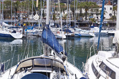 Yachts moored in Funchal seaport, Madeira island, Portugal. FUNCHAL, MADEIRA -Yachts moored in Funchal seaport, Madeira island Royalty Free Stock Photos