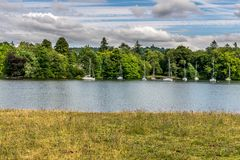 Yachts moored in a lake, next to a forest royalty free stock images