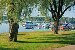 Yachts moored on the lake with the trees Stock Images