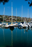 Yachts moored at marina Stock Photos