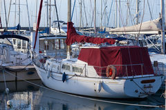 Yachts moored in a marina Stock Image