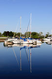 Yachts moored at Marina on a summer day. Royalty Free Stock Photo