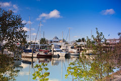 Yachts moored in a marina Royalty Free Stock Images