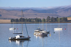 Yachts Moored on the Midmar Dam in the Natal Midlands Stock Image