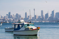 Yachts Moored in Sydney Harbour Royalty Free Stock Photography