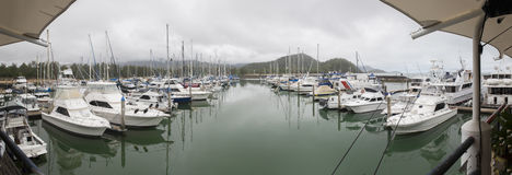 Yachts at Mooring - Reef Marina. Panoramic view of yachts and reef fleet at mooring, Yorkeys Knob Marina, Cairns, Queensland, Australia Royalty Free Stock Image