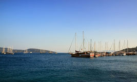 Yachts in the morning Royalty Free Stock Image