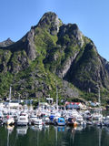 Yachts in mountain marina in Norway. Picturesque small marina under the mountains Royalty Free Stock Image