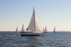 Yachts in one place Royalty Free Stock Photography