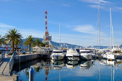 Yachts and palms in the porto Montenegro Royalty Free Stock Image