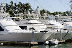 Yachts parked at dock Stock Image