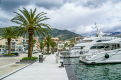 Yachts parked in Porto Montenegro,Tivat Stock Photography