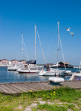 Yachts  by the pier in Northern Germany Royalty Free Stock Photo