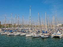 Yachts in the port of Barcelona. Sunny summer day Royalty Free Stock Photography