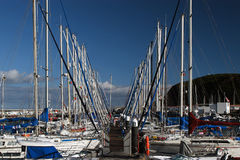 Yachts in port of Horta Stock Photo