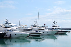 Yachts in the port. Yachts standing in port of Sochi, Russia Stock Photo